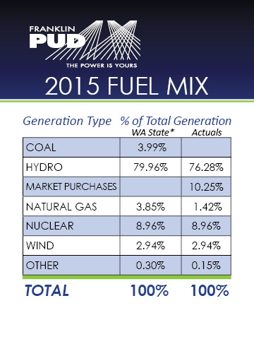 2015 Fuel Mix chart with percentages